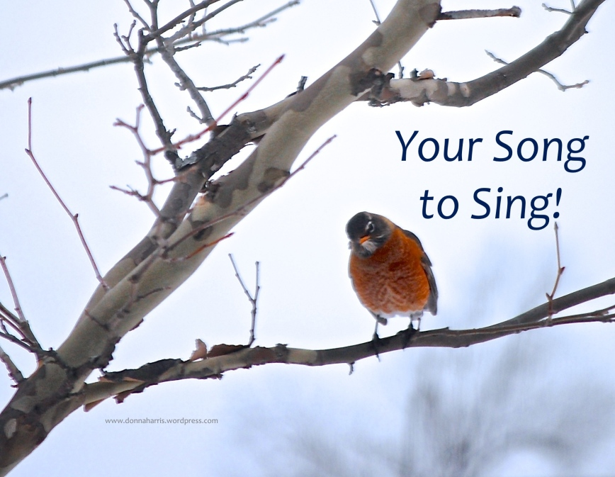 Your Song to Sing!