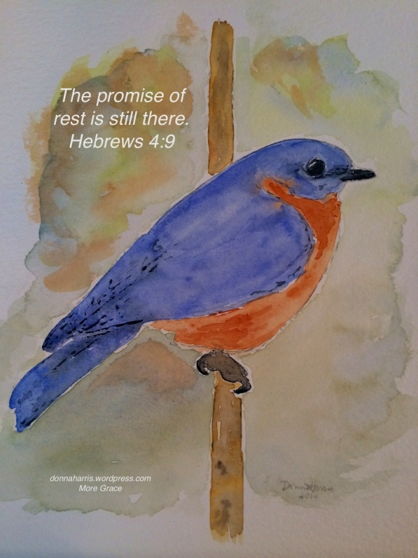 Blue Bird Rest copy