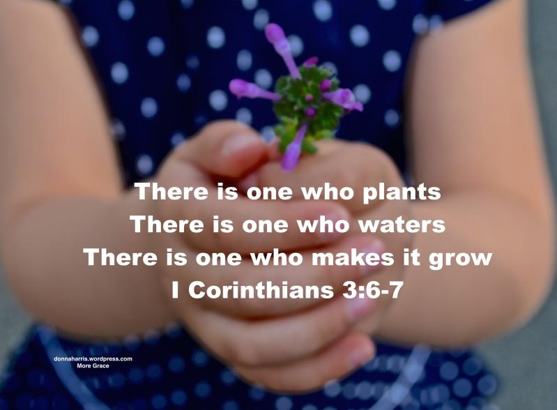Growing 2